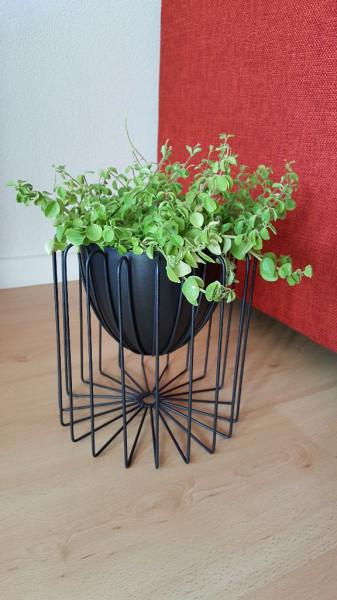 Plantenbak - Draadmand - Zwart