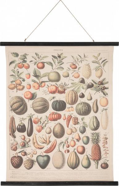 Wandkaart groenten en fruit